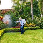 Fumigacion en Jardines